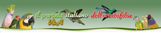Il Portale Italiano dell'Ornitofilia V&A - Home Page