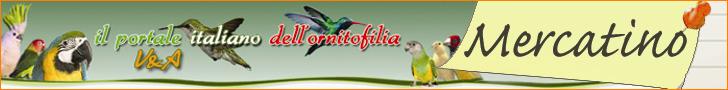 Il Portale Italiano dell'Ornitofilia V&A - Home Page Portale