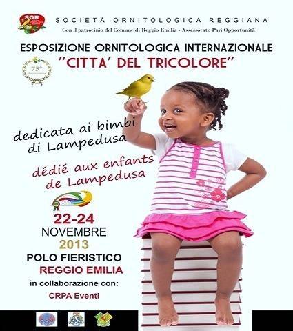 Internazionale Ornitologica Reggio Emilia 2013