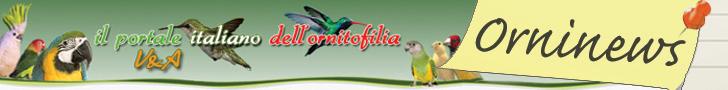 Il Portale Italiano dell'Ornitofilia V&A - orninew quotidiana