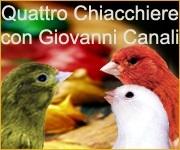 Il Portale Italiano dell'Ornitofilia V&A - Rubrica del Dott. Canali Canarino di Colore